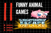11 Funny Animal Games