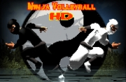 Ninja Volleyball HD